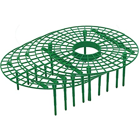 Macabolo Strawberry plants cultivation support rack plant climbing vine stand keep strawberries from red
