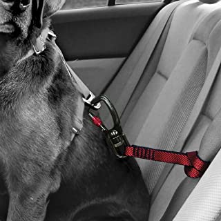 Kurgo Car Safety Tether for Dogs with Swivelling Carabiner Clip, Connects Harness to Seatbelt, One Size, Red, Swivel Tether