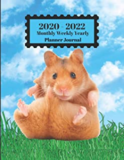 2020 - 2022 Monthly Weekly Yearly Planner Journal: Hamster Sitting In Grass Blue Sky White Clouds Cover 2 Yr Planner Appoi...
