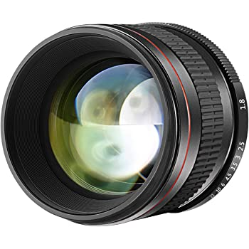 Nikon AF-S 85mm F1.8 G - Objetivo para Nikon (distancia focal fija ...