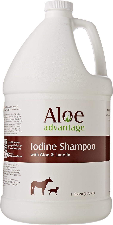 Aloe Advantage Aloe Iodine Shampoo