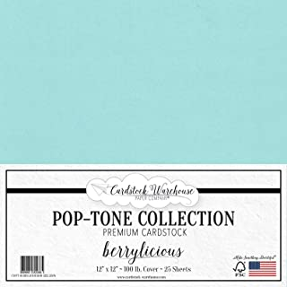 BERRYLICIOUS Blue Cardstock Paper - 12 x 12 inch 100 lb. Heavyweight Cover - 25 Sheets from Cardstock Warehouse