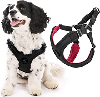 Gooby - Escape Free Sport Harness, Small Dog Step-In Neoprene Harness for Dogs that Like to Escape Their Harness, Black, M...