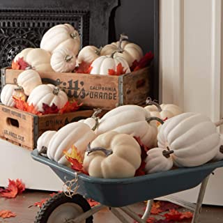 Factory Direct Craft Bulk Case of 28 White Artificial Harvest Pumpkin Assortment for Halloween, Fall and Thanksgiving Decorating