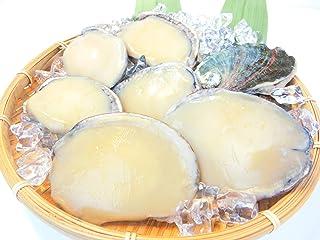 殻付きアワビ 3L 7粒から8粒入り1kg 生食用 活け〆 冷凍 高級・殻付あわび1kg・