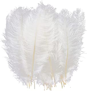 Best giant white feathers Reviews