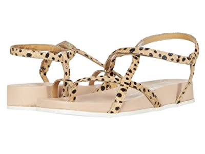Dolce Vita Rhyan (Leopard Haircalf) Women