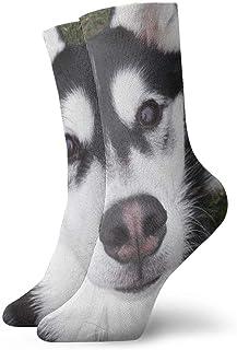 Calcetines Curiosos de compresión para Cachorros Calcetines Casuales Divertidos, Calcetines Finos Tobillo Corto para Exteriores, absorción de Humedad atlética