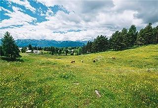 BuEnn 9x6ft Spring Farm Landcape Fotografie Hintergrund Hintergrund Wiese Big Farmland Wolkenloser Himmel Könnte Natural Field Ladncape Fotografischen Hintergrund Portraits Fotostudio Requisiten