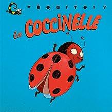 la coccinelle (Téquitoi ?) (French Edition)