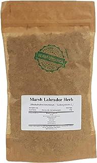 Marsh Labrador Herb - Rhododendron Tomentosum - Ledum Palustre # Herba Organica # Wild Rosemary, Northern Labrador Tea (100g)