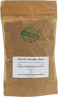 Best rhododendron labrador tea Reviews