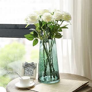 white o hara garden roses