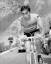 Eddy Merckx 8 x 10/8x10 GLOSSY Photo Picture