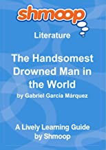 The Handsomest Drowned Man in the World: A Tale for Children: Shmoop Literature Guide
