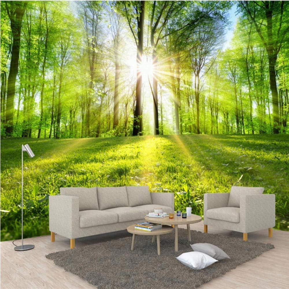 Pbldb Soldering Photo Wallpaper 3D Forest Mail order cheap Mural Sunshine Nature Landscape
