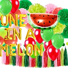 Watermelon 1st Birthday Party Decorations, One in a Melon Balloons Banner, Red and Green Tissue Pom Poms, Watermelon Tassels Garland, Watermelon themed Lantex Balloons for Watermelon Baby Shower, BBQs, Summer First Birthday Party Supplies & Decor