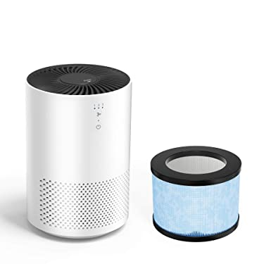 Intelabe HEPA Air Purifier with Two Filter Replacement(One is Already in Product) Eliminate Smoke, Dust, Pollen, Dander Air Purifiers for Home, Bedroom, Living Room, Kitchen and Office