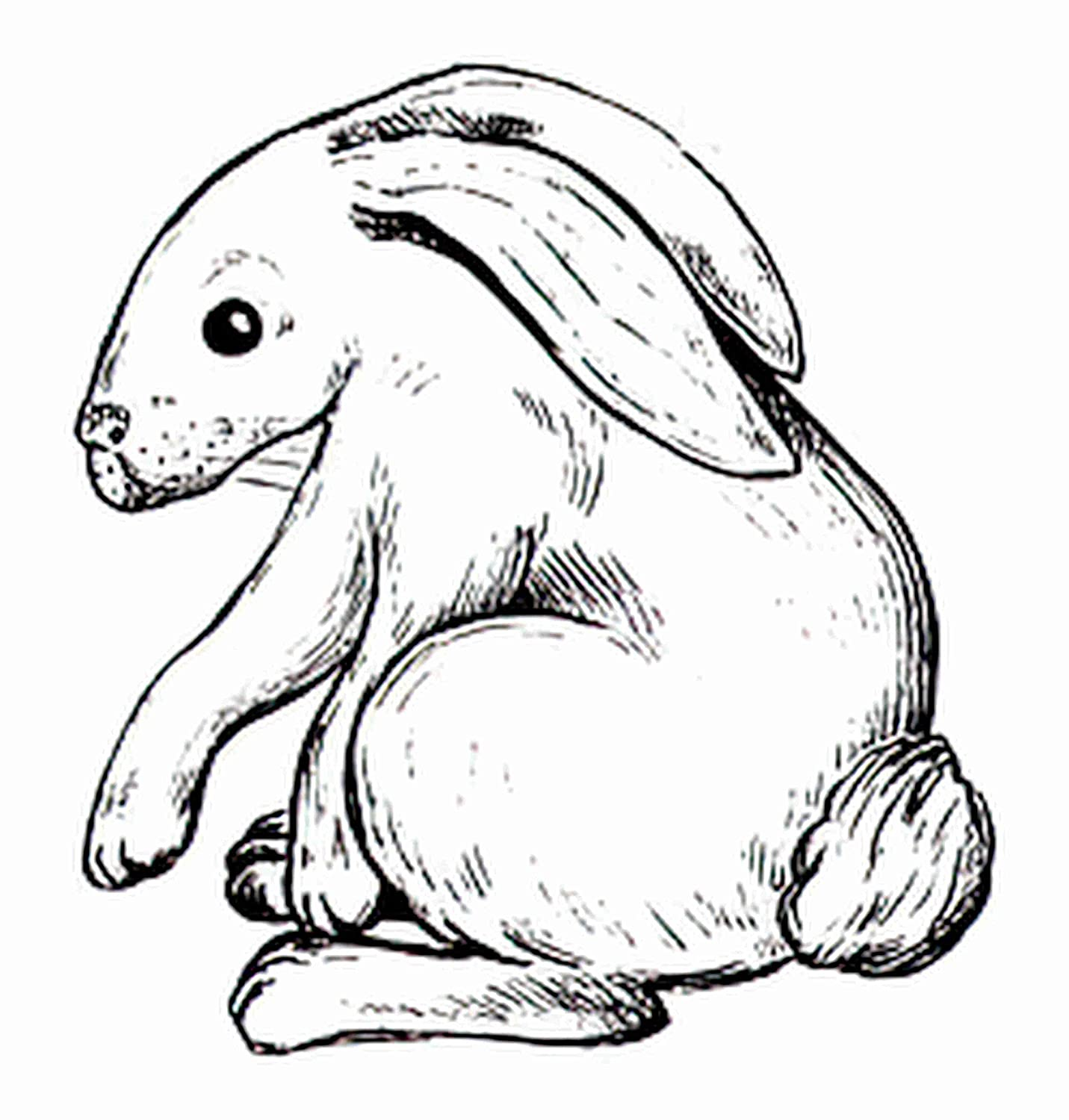 Temporary Tattoos 6 Sheets Cute Hare Rabbit Anima 70% OFF Outlet Bunny OFFicial site Wildlife