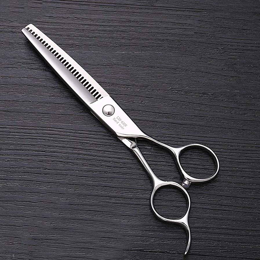 博覧会その間で出来ている6インチステンレススチールハイエンドプロフェッショナル理髪はさみ モデリングツール (色 : Silver)