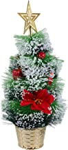 KESYOO Tabletop Mini Frosted Christmas Tree with Santa Claus Red Berry and Flower Poinsettias Christmas Table Decorations ...