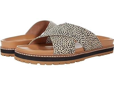 Madewell Dayna Crisscross Sandal in Spot Dot