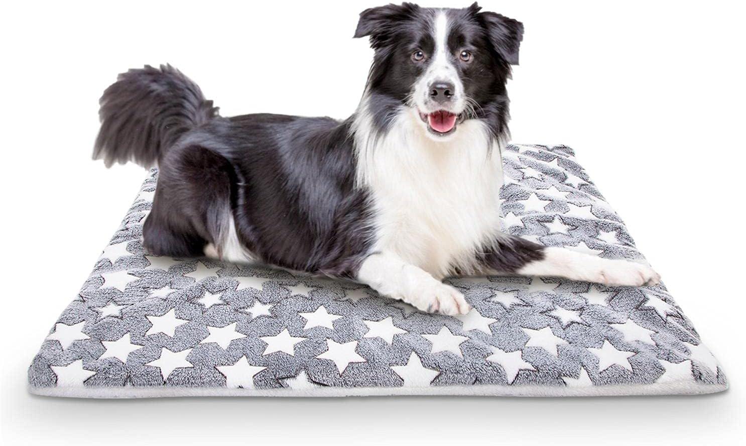 Nobleza colchón para Perros de Franela, colchoneta de Cama para Mascotas Reversible (cálido y frío), colchoneta para Dormir para Mascotas Adecuada para Perros Grandes y pequeños, Gris, L100*W75CM