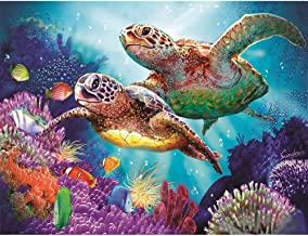 Balai DIY 5D Diamond Painting Rhinestone Colorful Turtle Pictures of Crystals Dotz Kits Arts, Crafts & Sewing Cross Stitch