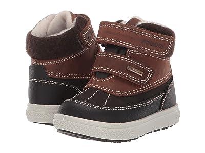 Primigi Kids PBZGT 43660 GORE-TEX(r) (Toddler) (Brown/Black) Boy