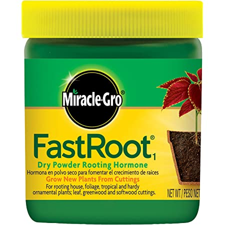 Miracle-Gro 1006451 FastRoot1 Rooting Hormone, 1.25 oz