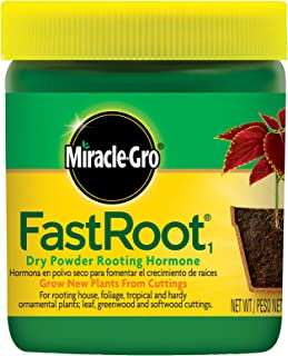 rooting hormone for edible plants