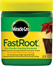 Miracle-Gro FastRoot1 Dry Powder Rooting Hormone 1.25 oz., Houseplant and Succulent Propagation,for Rooting House, Foliage, Tropical, and Hardy Ornamental Plants