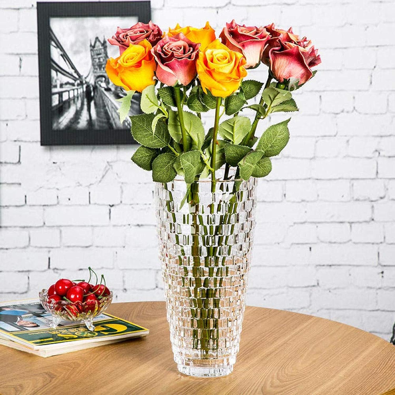 Sinzong Vases Vase en Verre Décoration Eau Transparente Culture ArrangeHommest De Fleurs Fleurs Séchées étage Salon 30Cm