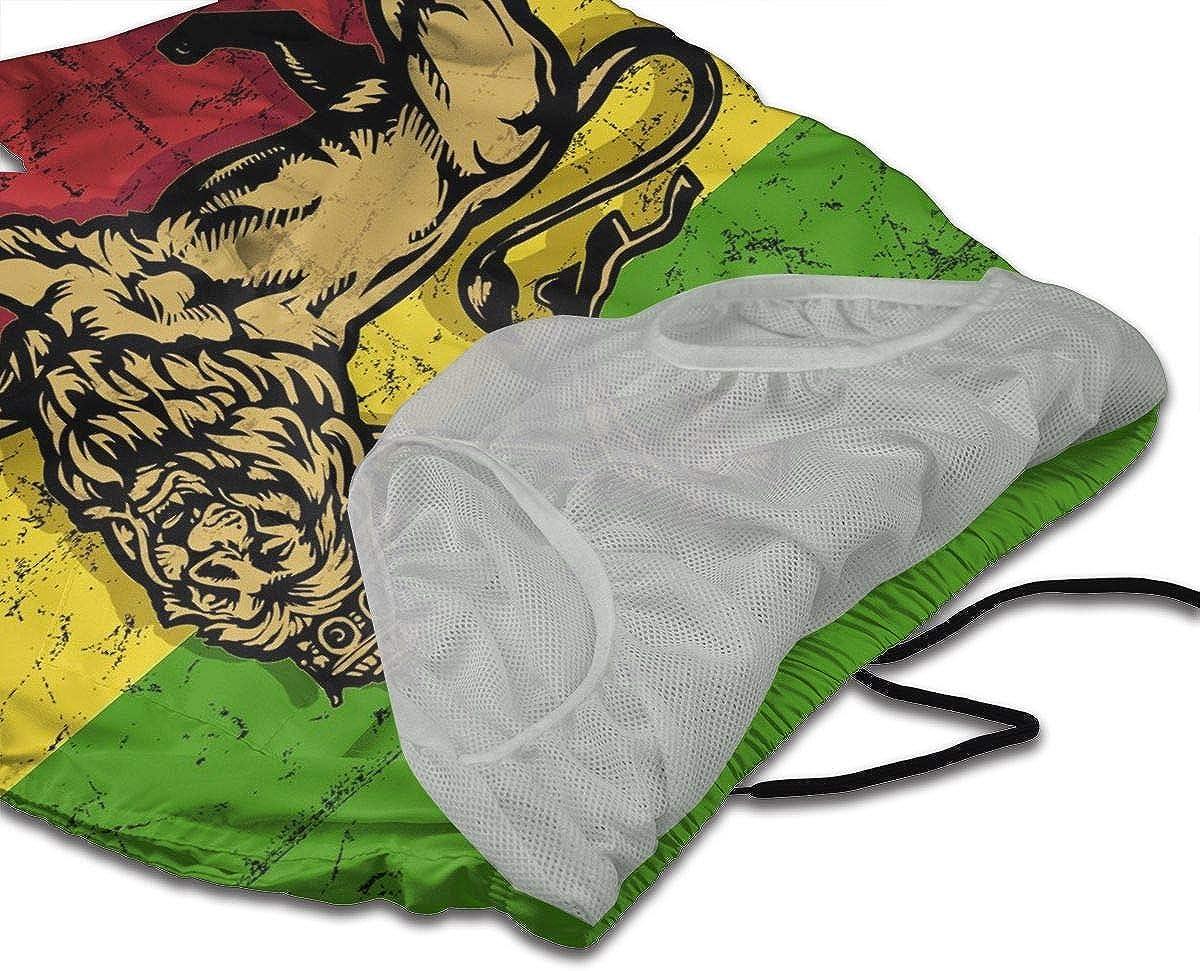 DASMUS Lion of Judah Flag Men Drawstring Beach Board Shorts Swim Trunks with Mesh Lining