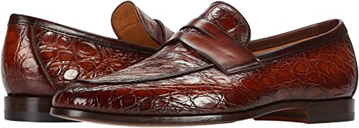 Cognac Crocodile 2
