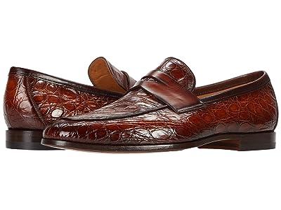 Magnanni Viggo (Cognac Crocodile 2) Men