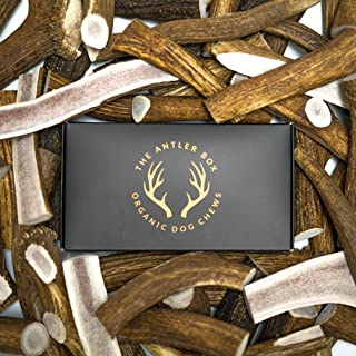 The Antler Box-Premium Elk Antler Dog Chews (1 lb Bulk Pack) -Both Whole and Split Antlers-Long Lasting Organic Chewing Toys Sourced from Naturally Shed Antlers in The USA (Large)