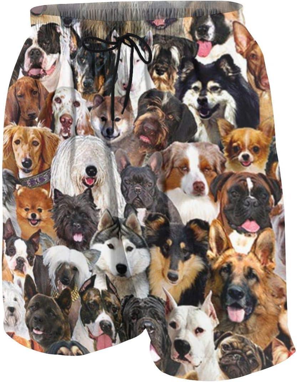 xqqr Boys Beach Board Shorts Dogs Cute Dog Face Teens Bathing Suit Quick Dry Swim Trunks