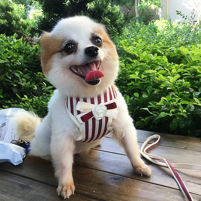 El nuevo outlet de marcas online. L Pet supplies Correa para Perro Perro Perro Perro pequeño Perro Mediano Teddy Chaleco Correa para el Perro Cadena para Perro Correa para Perro Suministros para Perros  venta con descuento