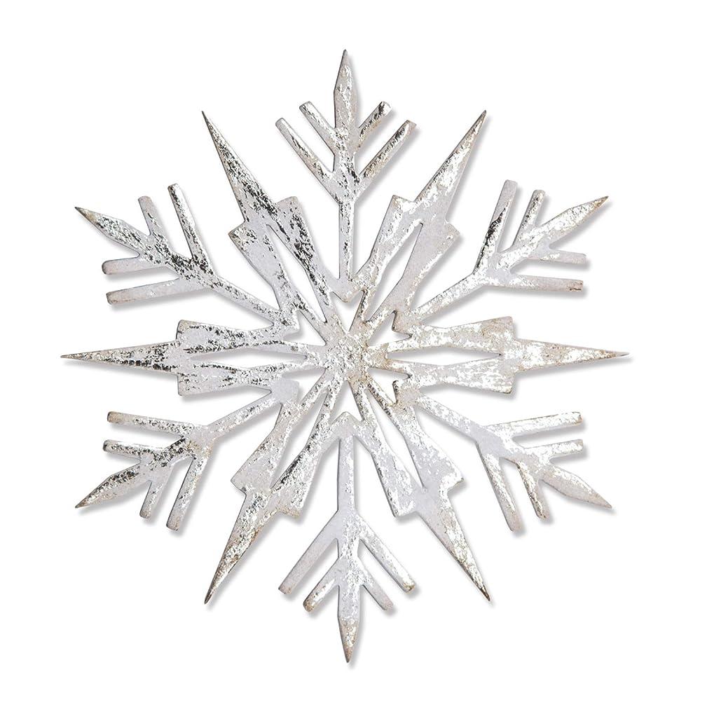 Sizzix 663109 Bigz Die, Ice Flake by Tim Holtz, Gray inaajee587945