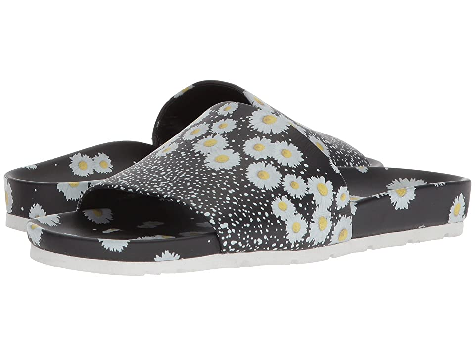 Kennel & Schmenger Love Daisy Slide (Black/White Daisy) Women