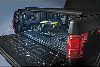 Genuine Ford FL3Z-13E754-A LED Bed Light Kit, Rear