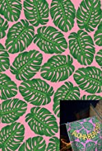 5x7ft Tropical Leaves Photography Backdrop Banana Palm Photo Backdrop for Party Pictures YouTube Video Baby Shower W-804