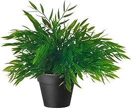 fake house plants ikea