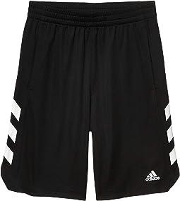 Basketball Shorts (Big Kids)