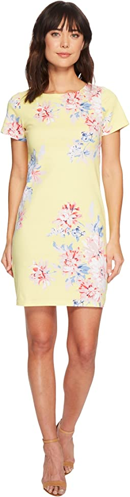 Joules Riviera Short Sleeve Printed Jersey Dress