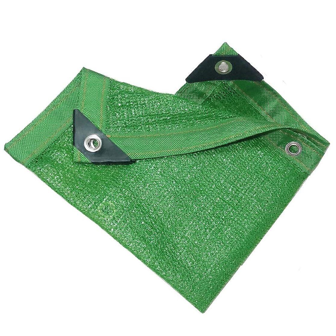 旅行五十それにもかかわらず農業用遮光ネット 90% 緑 日焼け止め 遮光ネット 6ステッチ バルコニー フラワーズ グリーンプラント 遮光ネット 23サイズ 家庭屋外日よけネットQFLY (Color : Green, Size : 4x8m)