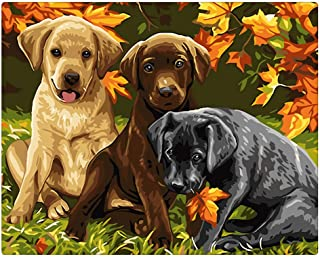 Sonby Paint by Numbers Canvas Paints Brushes Kits for PBN Beginners,Three Dogs Acrylic Painting by Numbers for Home Wall Décor,Unframed 16x20