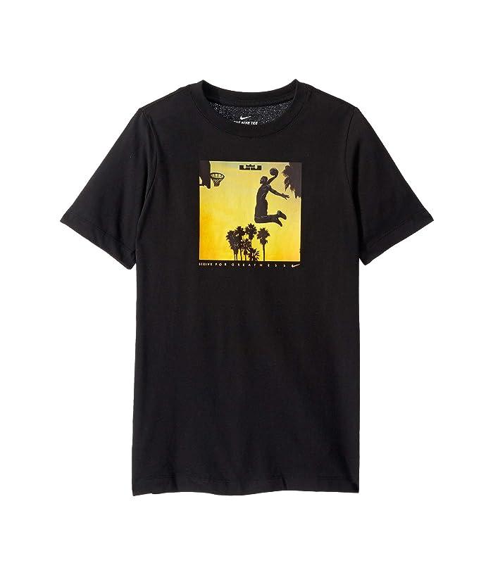 Nike Performance Lebron James Lion Dry Tee T shirts Print