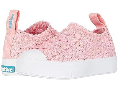 Native Kids Shoes Jefferson 2.0 Liteknit Low (Toddler/Little Kid) (Princess Melange/Shell White) Girl